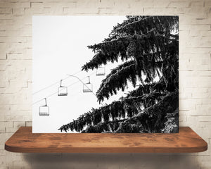 Pine Tree Ski Lift Photograph Black White