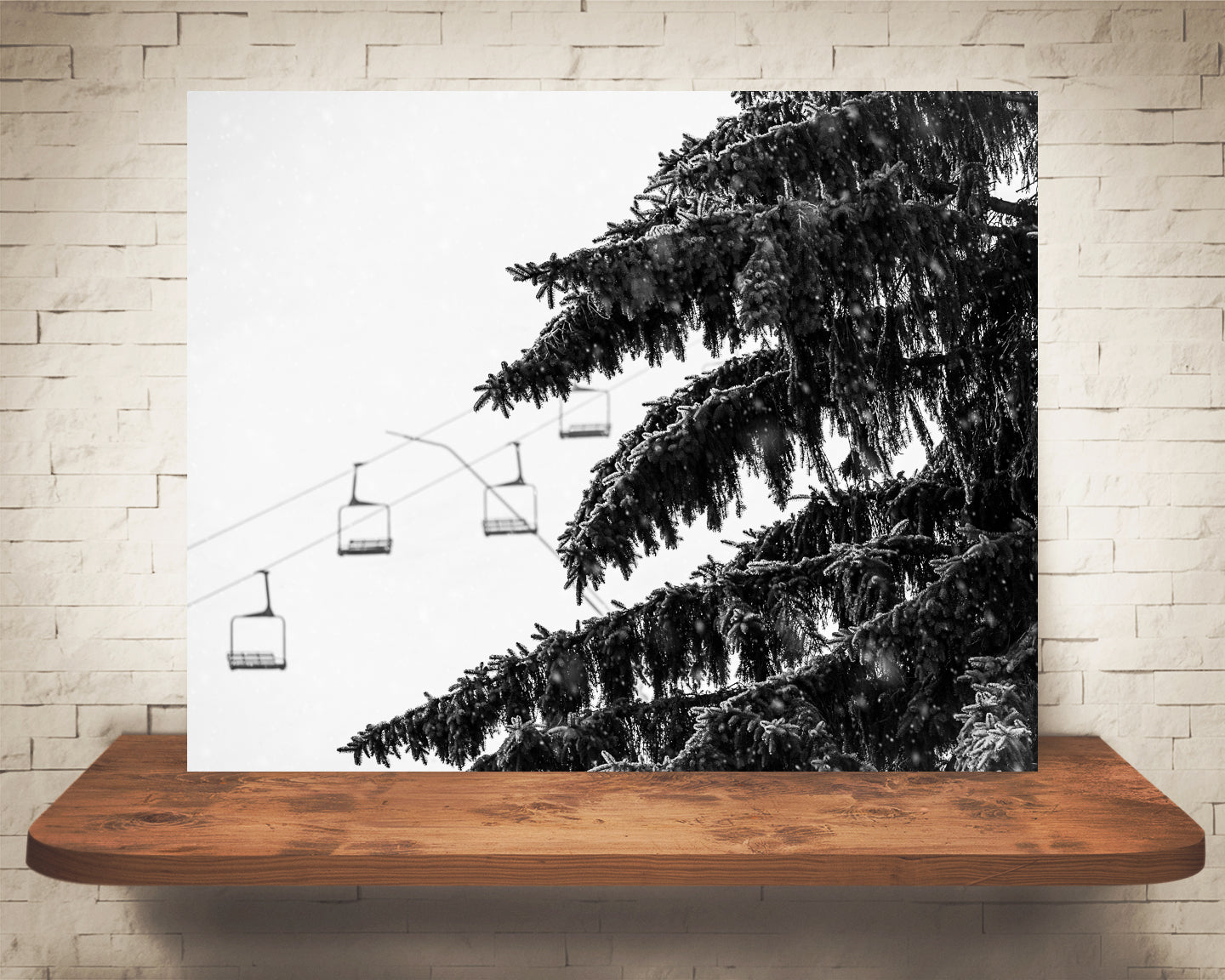 Pine Tree Ski Lift Photograph Black White Snow