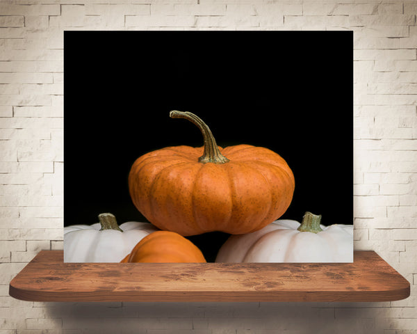 Pumpkin Photograph
