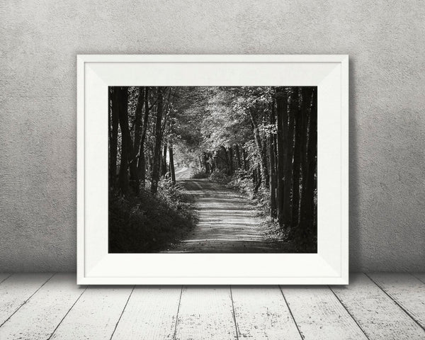 Country Road Fall Photograph Black White
