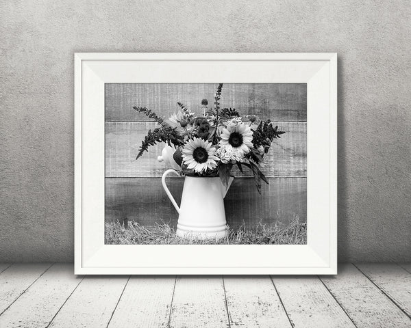 Sunflower Photograph Black White
