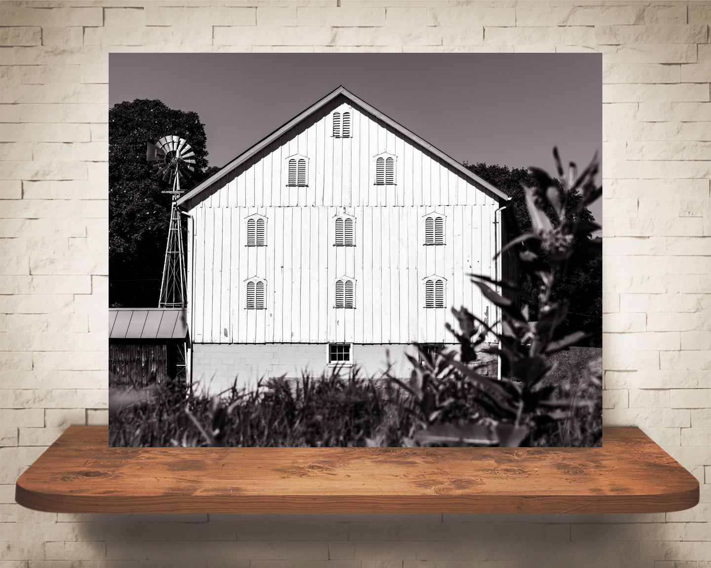 White Barn Photograph Sepia