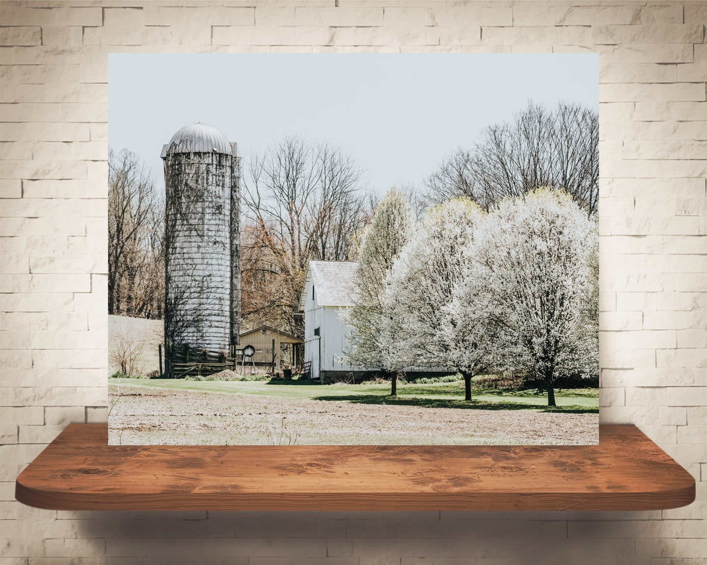 White Barn and Silo Photograph