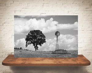 Country Landscape Windmill Photograph Black White
