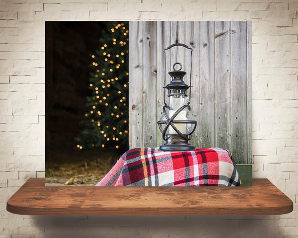 Christmas Tree Lantern Photograph
