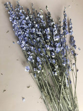 Load image into Gallery viewer, Larkspur - Blue