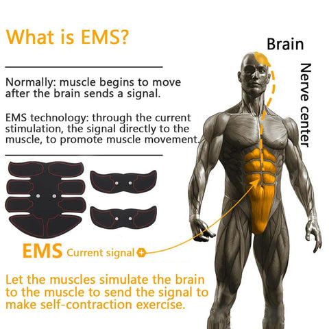 abs trainer ems