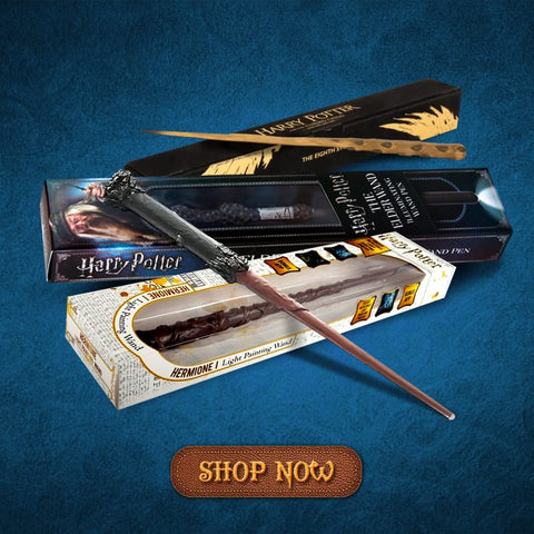 Harry Potter Wands in Window Box