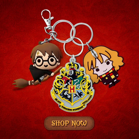Harry Potter Rubber keyrings