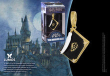 Load image into Gallery viewer, Lumos Charm 11 Tom Riddle's Diary - House Of Spells