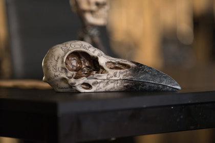 Official Edgar Raven Skull at the best quality and price at House Of Spells- Fandom Collectable Shop. Get Your Edgar Raven Skull now with 15% discount using code FANDOM at Checkout. www.houseofspells.co.uk.