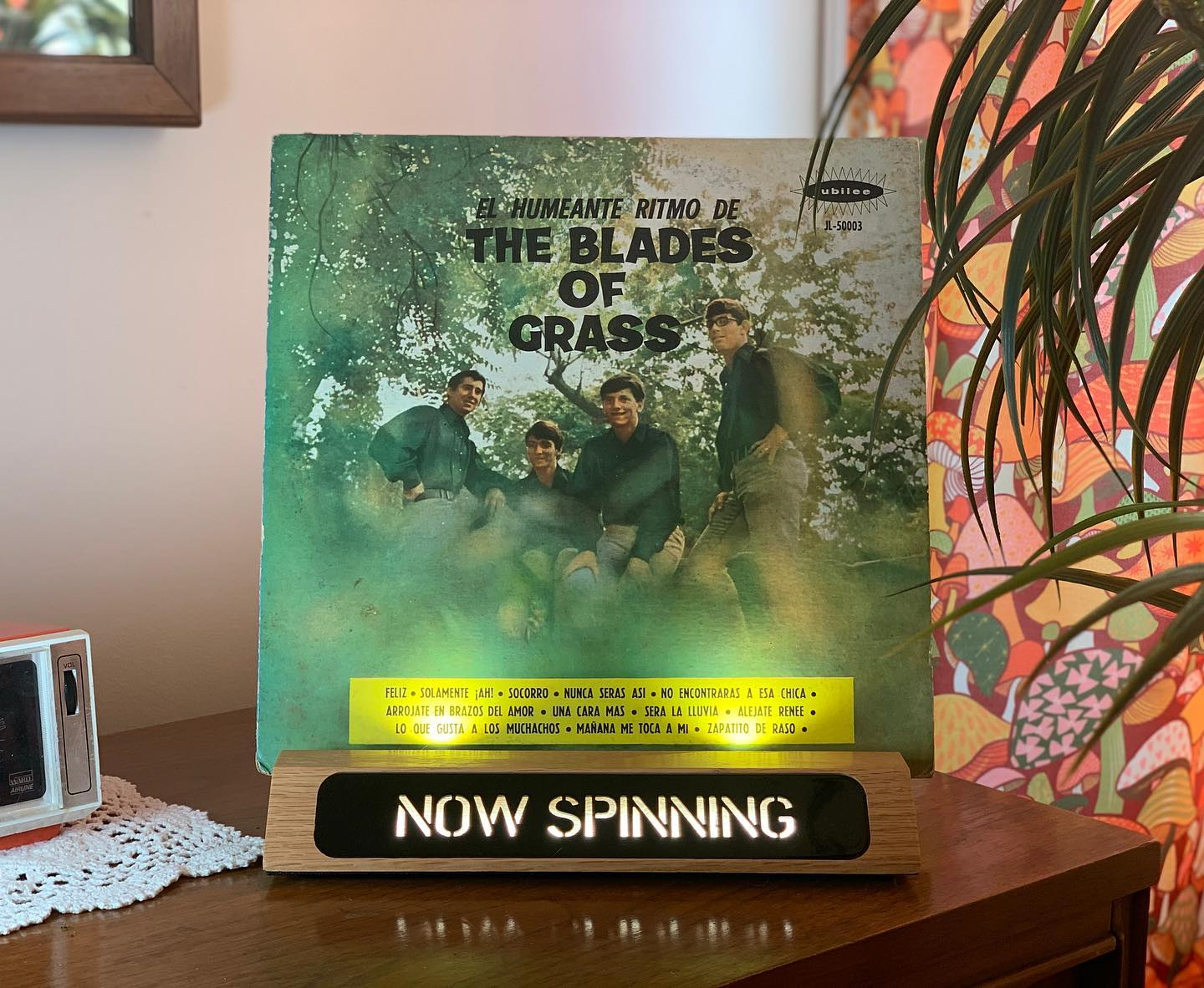 "Vinyl-a-Day 48: The Blades of Grass - ""The Blades of Grass Are Not for Smoking"" (Jubilee, 1967)"