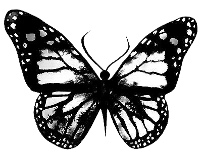 BLACK AND WHITE BUTTERFLY  HEAT STICKER DECALS FOR FABRIC , SHOES, PLASTIC
