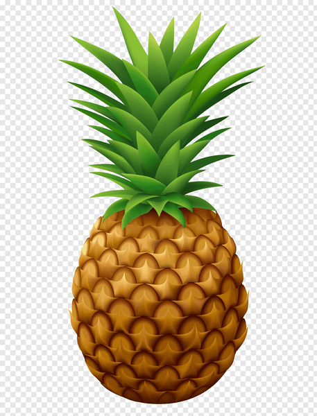 PINEAPPLE  HEAT STICKER DECALS FOR FABRIC , SHOES, PLASTIC