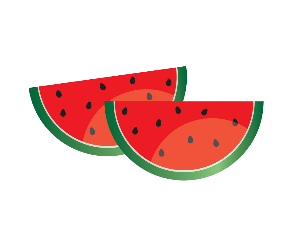 WATERMELON HEAT STICKER DECALS FOR FABRIC , SHOES, PLASTIC