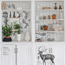 Load image into Gallery viewer, Redesign Decor Transfer - Deer