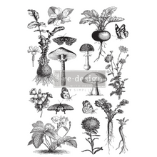 Load image into Gallery viewer, Redesign Decor Transfer - Fungi Forest