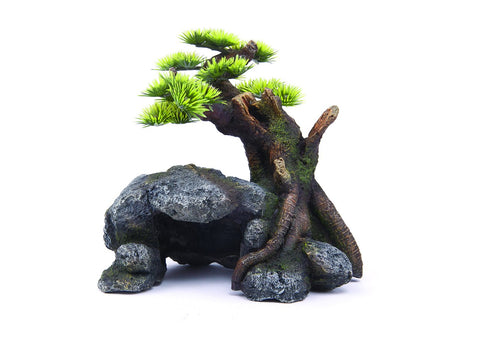 Kazoo Bonsai With Cave and Plants