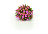 biOrb Flower Ball
