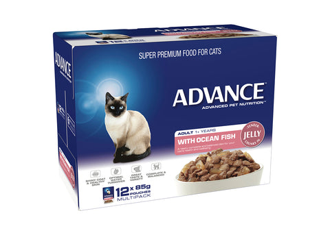 Advance Cat 1+ Years Adult With Ocean Fish In Jell