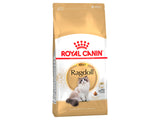 Royal Canin Adult Ragdoll