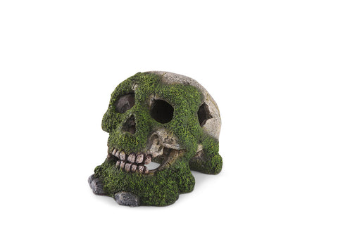 Kazoo Skull With Moss and Air