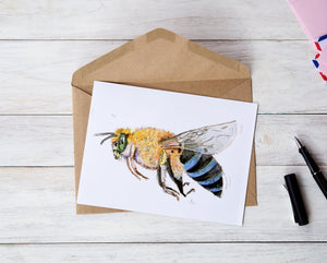 Native blue banded bee greeting card