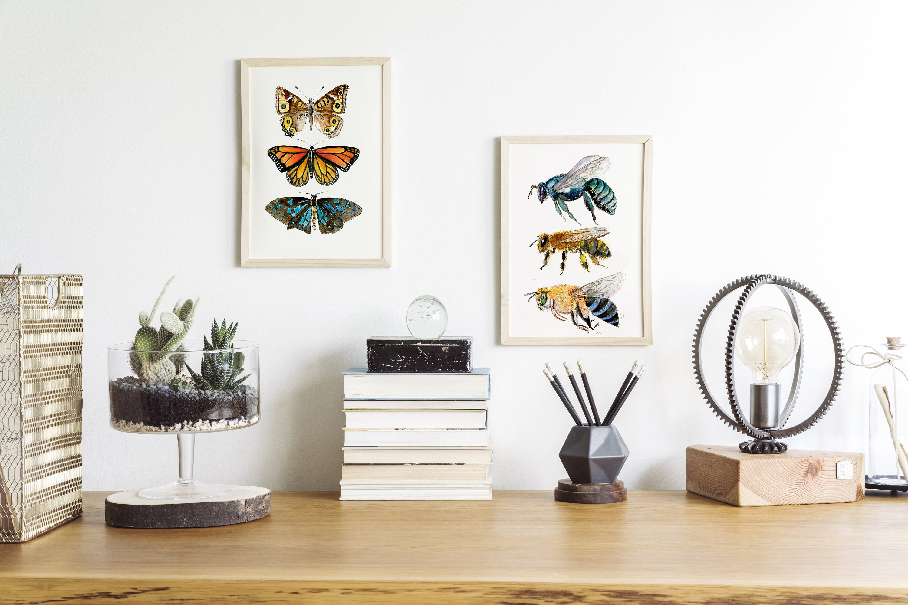 butterfly print, nature study,
