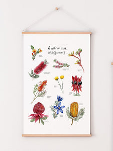 Australian native wildflower poster