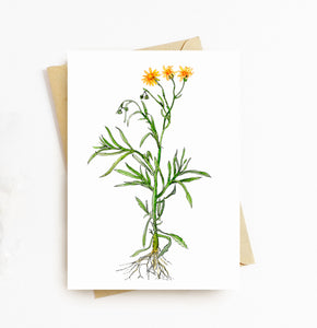 Fire weed greeting card