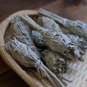 Incausa | White Sage Smudge Bundles
