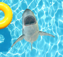 Load image into Gallery viewer, Shark Attack Poolmat from above