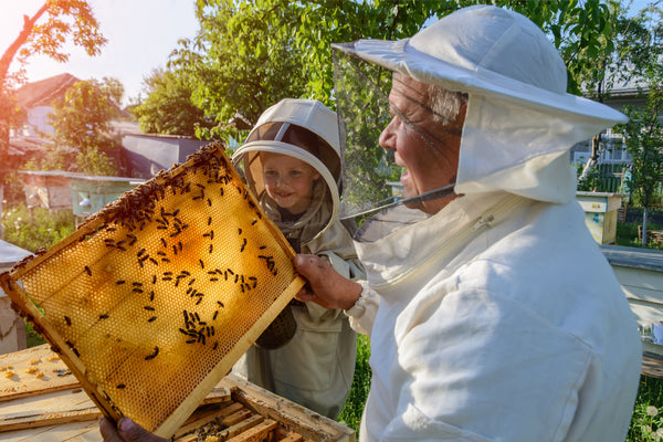 Urban Beekeeping Spring Class June 8, 2019