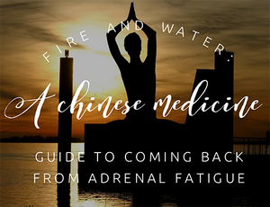 Fire and Water: A Chinese Medicine Guide to Understanding Adrenal Fatigue