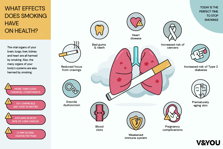 V&YOU   Infographic showing the effects of smoking on the human body.