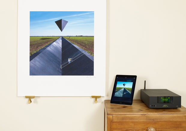 Scale photo of Goose art print by Storm Thorgerson