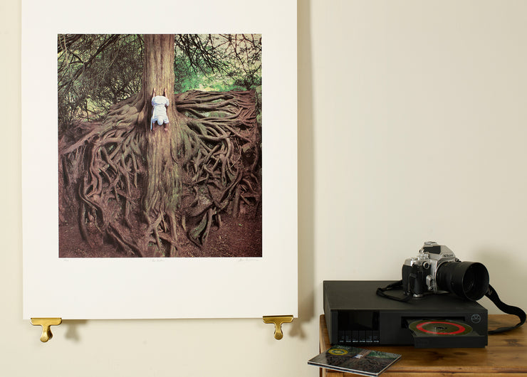 Scale photo of Mars Volta The Widow  album art print by Storm Thorgerson