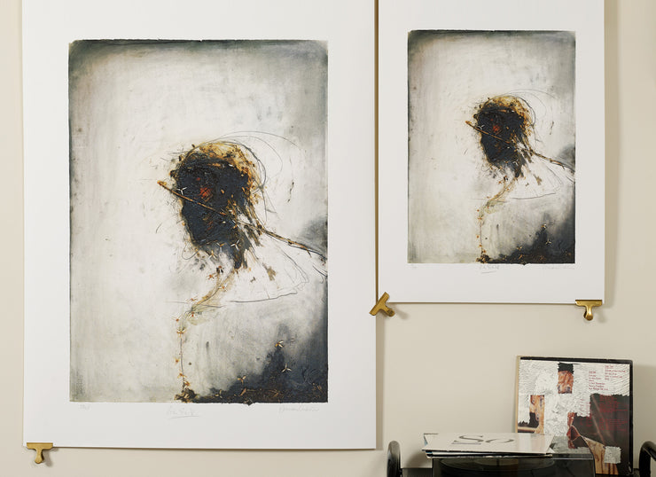Scale photo of Peter Gabriel album art print by Julian Grater