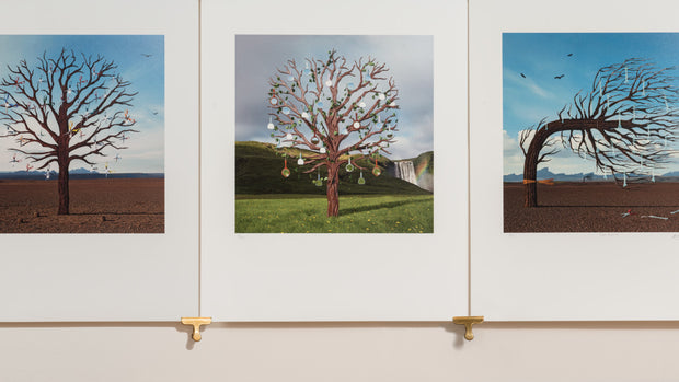 Scale photo of Biffy Clyro Opposites art print by Storm Thorgerson
