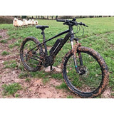 MBM Metis Electric Mountain Bike