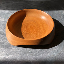 The Ultimate Dog Bowl