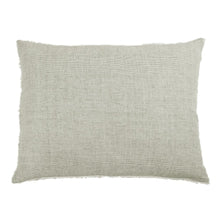 "Load image into Gallery viewer, LOGAN BIG PILLOW 28"" X 36"" WITH INSERT -3 COLORS"