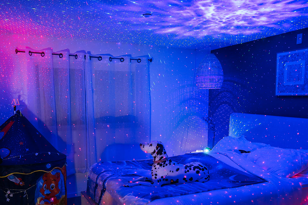 dog in bedroom looking up at star lights