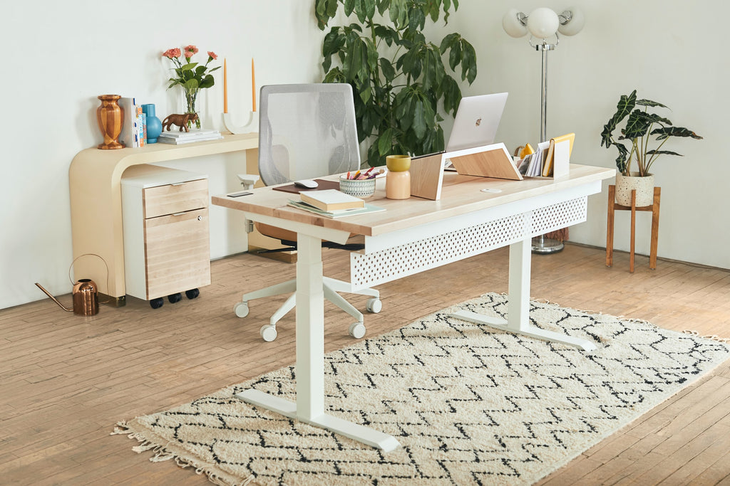 colorful rugs for office