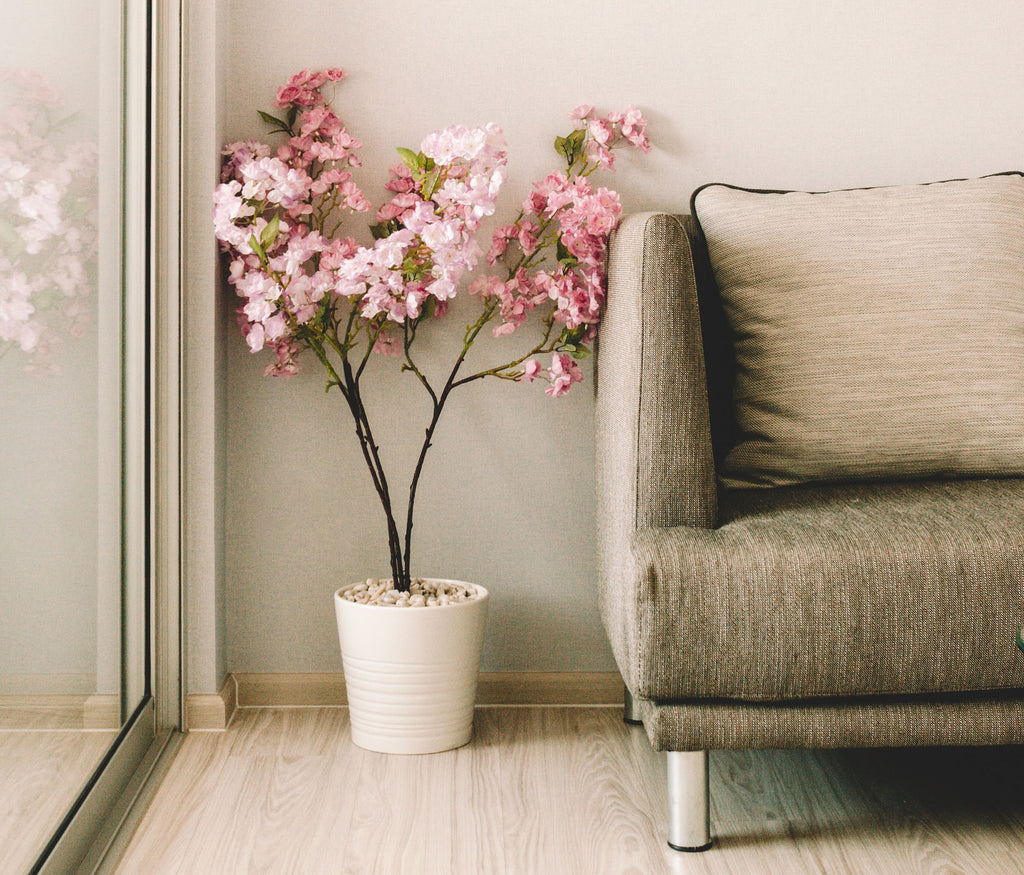 pink room accents