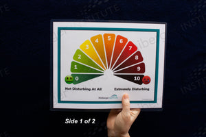 Disturbance Scale (0 – 10) and Belief Scale (1-7) Card