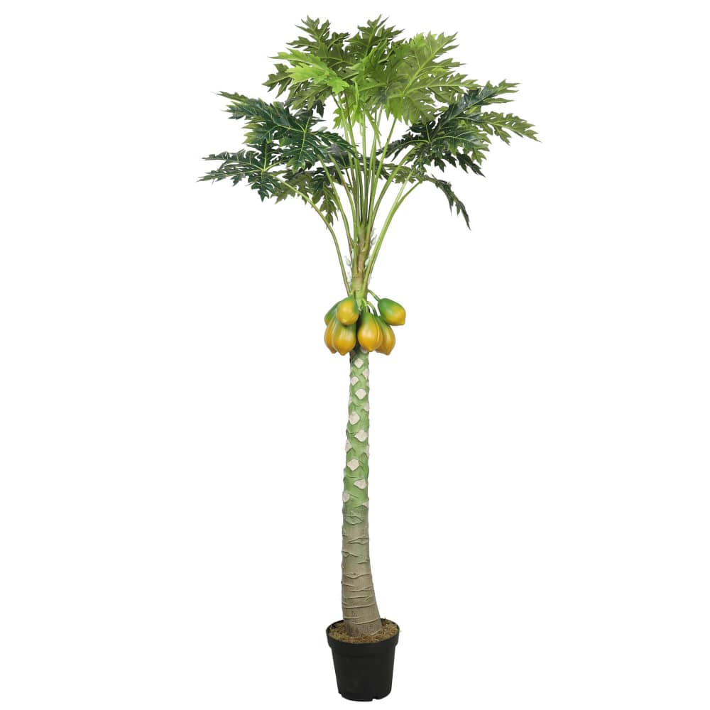 indoor papaya artificial plant for home