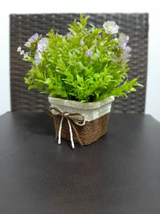 beautiful decor basket plant