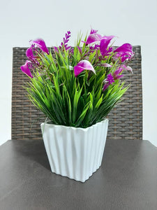 beautiful decor table plant