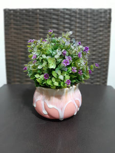 cute table decor plant